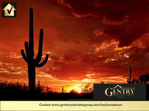 Saguaro National Park is a Big Part of What Makes Tucson a Magical Place to Live