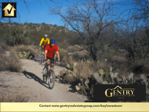 "Bicycling Tucson: Tucson's award-winning bike paths make it a ""Best Road Biking City"" in the U.S."