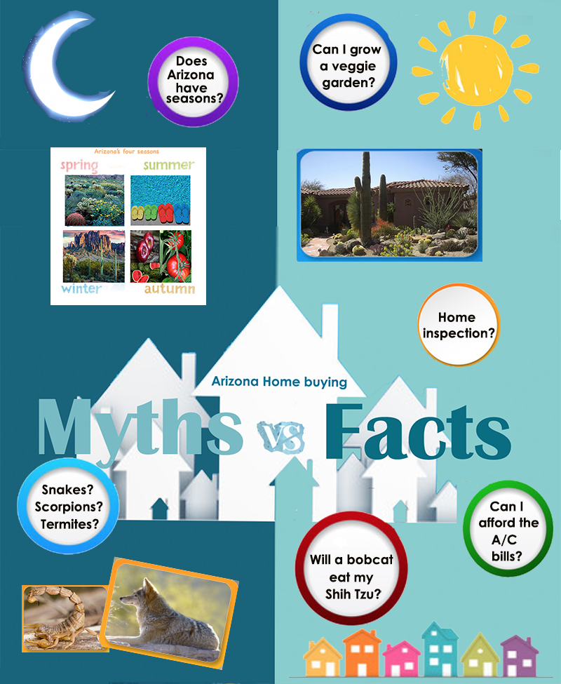 Myths and facts about Arizona